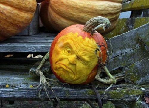 halloween_tok3