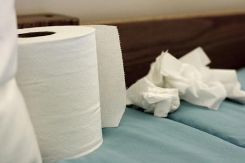 toalettpapir-torlokendok
