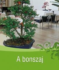 bonszaj-borito
