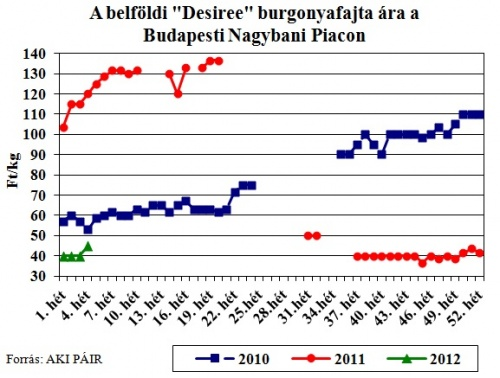 desiree-burgonya