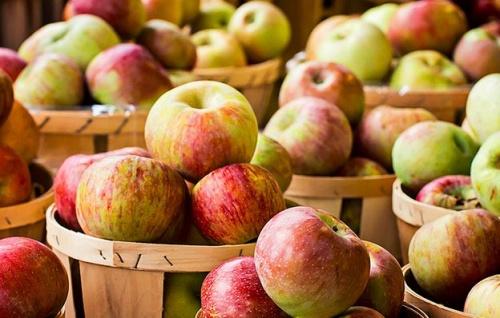őszi alma
