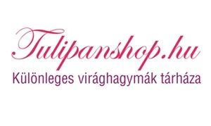 tulipanshop