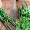 Snidling: vitaminban gazdag gyomorerősítő