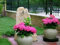 A feng shui egyensúlyt teremt a kertben