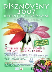 DÍSZNÖVÉNY: 2007-BEN 2 KIÁLLÍTÁS