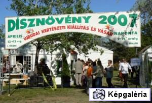 DÍSZNÖVÉNY 2007 ÚJBUDÁN