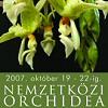 Októberben ismét orchidea- és broméliakiállítás