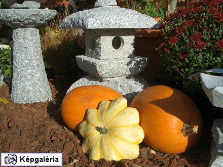 Gellért-hegyi tökös krizantémok: Őszi Kertészeti Napok 2007 - fotógalériával
