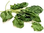 Spenótdiéta: zsírégető, anyagcsere fokozó receptek