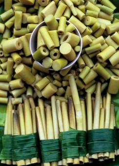 Isten azért teremtette a bambuszt, hogy gazdaggá tegye vele a kínaiakat