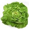 Fitneszeledel jó áron: érdemes fejes salátát (v)enni
