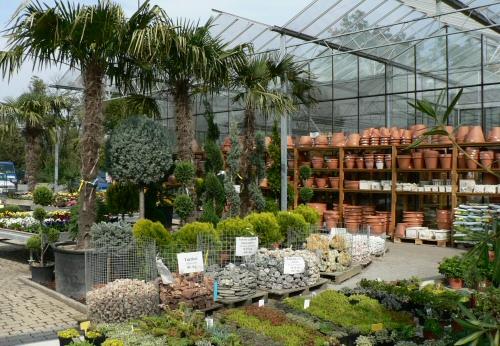 Körbejártunk egy óriási kertészetet - videókamerával