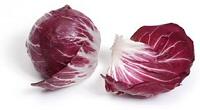 Radicchio - salátalevél Itáliából