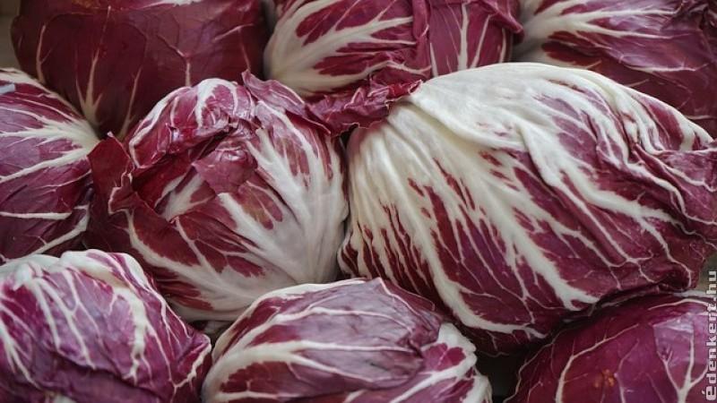 Hogyan együk a radicchio salátát?