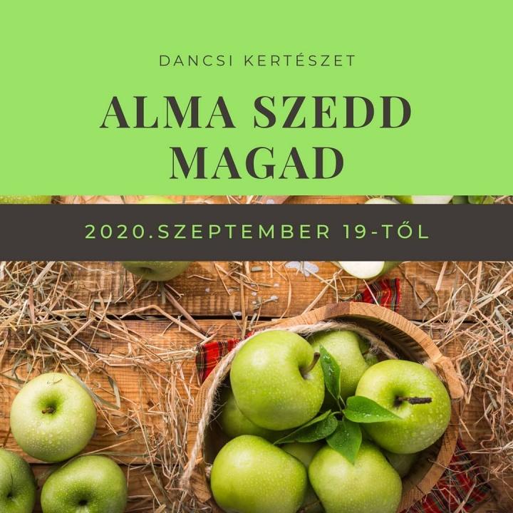 alma_szedd_magad_2020