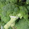 Mélyponton a brokkoli