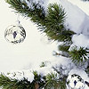 Küldj be fotót és nyerj egy szuper, élő karácsonyfát!