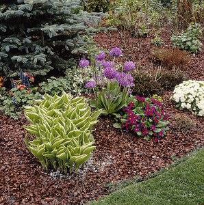 Fedd be a kerted gusztusos takaróval, senki ne mondja, hogy nem gazolsz