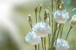 Top 6 trendi vágott virág télen