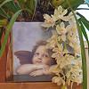 Láttál már orchideával díszített karácsonyfát? Nézd!