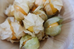 Földicseresznye: egzotikus nassolnivaló a konyhakertből