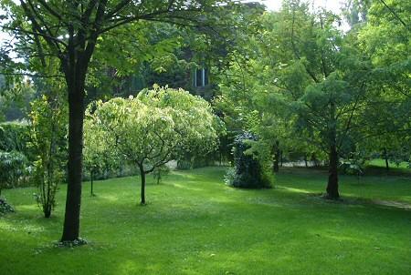 A haragos zöld fű egyik titka a tápanyag-utánpótlás