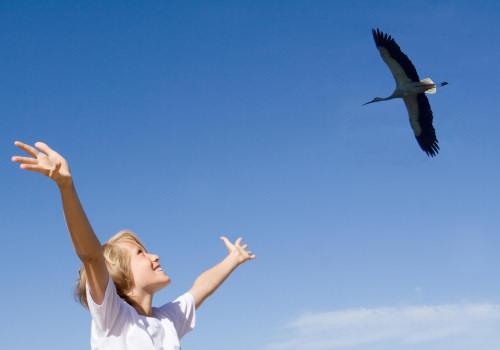 Készülj, hamarosan indul a tavaszi madárles!