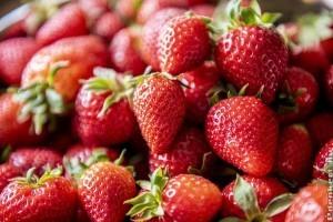 Epres finomságok: sós és édes receptek tejérzékenyeknek is