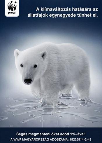 Adó 1%: milyen természet- és környezetvédő szervezetnek ajánlhatom fel?