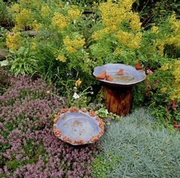 Tavaszi tennivalók a madár- és állatbarát kertben