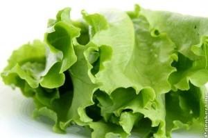 Fejes saláta, a tavasz és szüzesség szimbóluma?