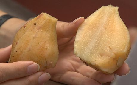 Yacon, az inkák diétás krumplija