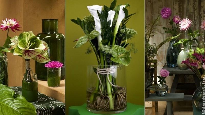Trendi vágott virágok nyáron: flamingó, kála, dália és a kapor