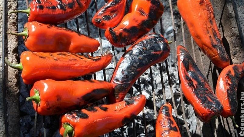 Kápia: a legjobb grillpaprika
