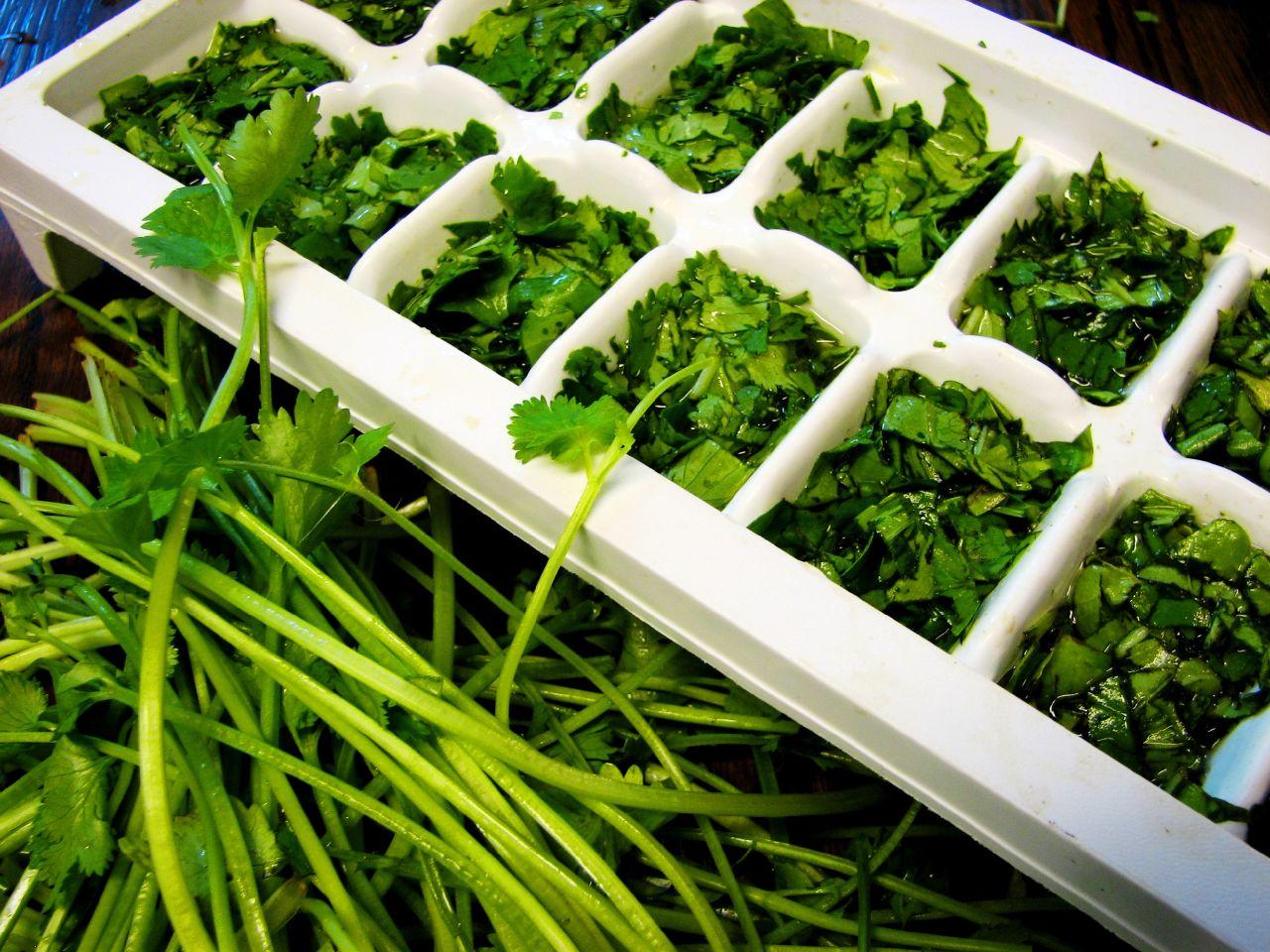 Hibernált egészség - fagyasztott gyógynövények