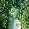 Hogyan tervezzünk hosszú, keskeny földterületre kertet?