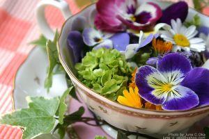 A virágzselé és a kandírozott virág készítésének titkai