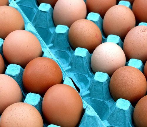 tojástartós tojás