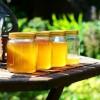 Mézet az asztalra! - történet és mézfajták