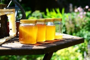 Mézet az asztalra! Mézfajták és gyógyhatásaik