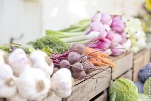 Szüreti praktikák a kisebb nitrát tartalmú zöldségekért
