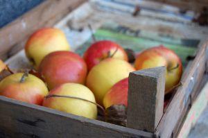 alma ládában