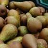 Tippek a gyümölcsök téli tárolásához