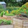 Így készítsünk magaságyat kertünkbe!