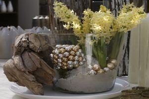 Jácinthagyma az ágon és a borókafán -  Mi a trendi asztaldísz 2009 karácsonyán?