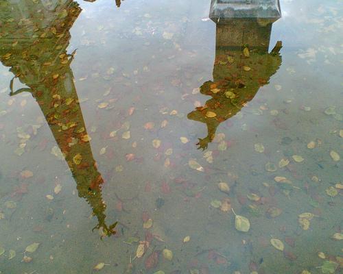 Brüsszel esőben
