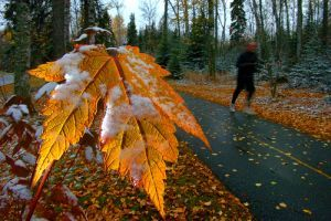 Ne aludjunk téli álmot! - anyagcsere gyorsítás 7 lépésben