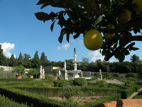 Villa Castello