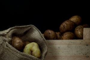 3 tipp a termények tárolásához