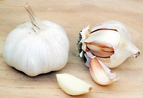 a fokhagyma erősen antibakteriális és gombaellenes hatású